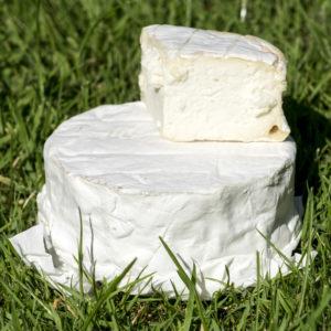 Le Petit Réortais - fromage fermier à pâte molle