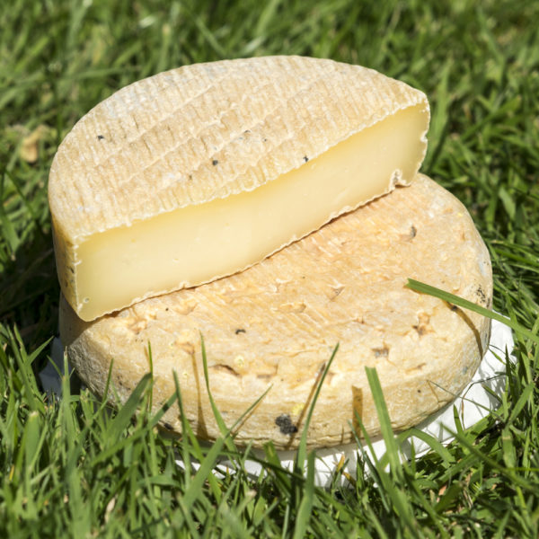 Tomme charentaise - fromage fermier