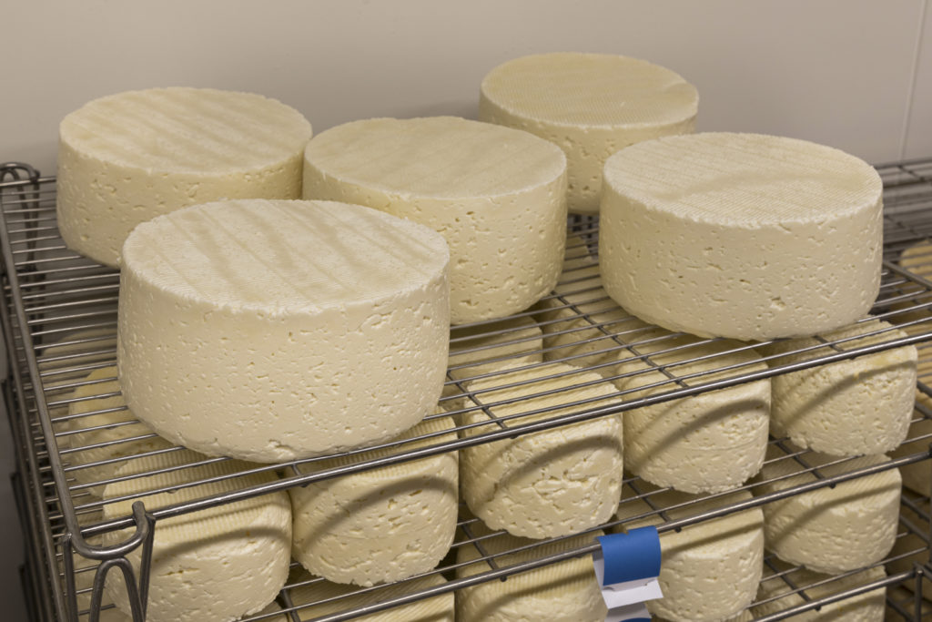 Affinage des fromages La Vache Charentaise